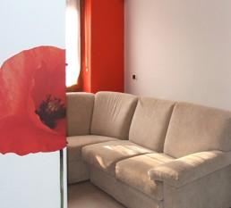 casa papavero - arredare una casa piccola cambiano architettura